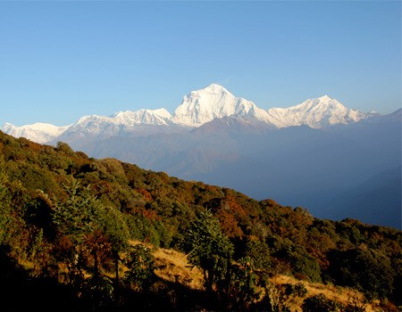 Ghorepani Poon hill student tour
